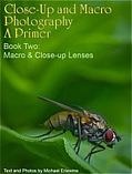 A Primer