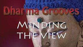 Dharma Grooves: Minding the View