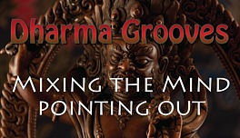 Dharma Grooves:  Mixing the Mind - Pointing Out Instructions
