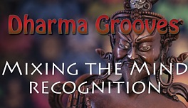 Dharma Grooves: Miixing the Mind - Recognition